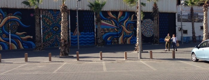 Container art space is one of Tel-Aviv.
