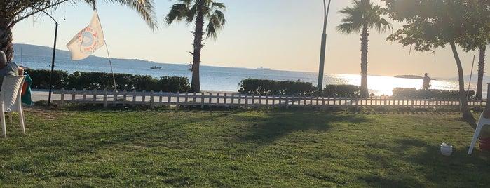 Pupa Yelken Cafe Beach is one of Posti che sono piaciuti a Tahsin.