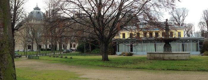 Jardins des Champs-Élysées is one of Les parcs et jardins accessibles aux chiens.