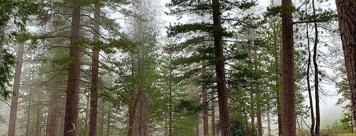 Angeles National Forest is one of Los Angeles Summer 2019.