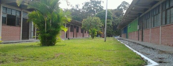 CA - Central de Aulas is one of Mayara : понравившиеся места.