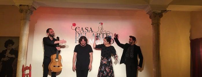Casa Del Arte Flamenco is one of Granada 17.
