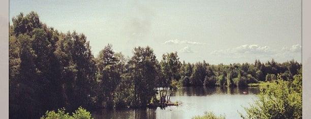 1-е Ждановское озеро is one of Искусство и природа!.