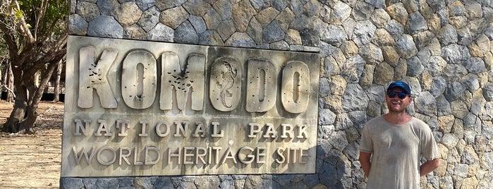Komodo National Park is one of CBS Sunday Morning 5.