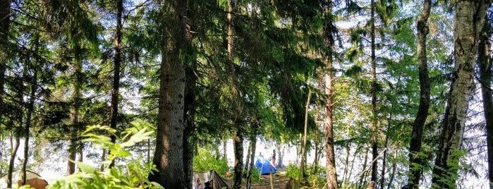 Bodomjärven kolmoismurhan tapahtumapaikka is one of Places I have been 3.