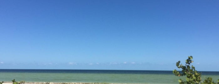 Playa zac-ha is one of Tempat yang Disukai Joaquin.