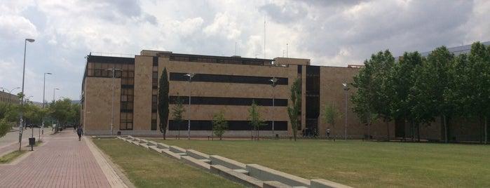 Campus Miguel de Unamuno is one of Pasear en Salamanca.