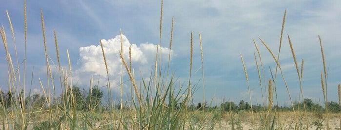 Пляж на Дальней Косе is one of Lugares guardados de Max.
