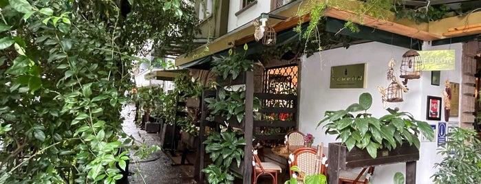 Restaurante Cedrón is one of Nuevos.