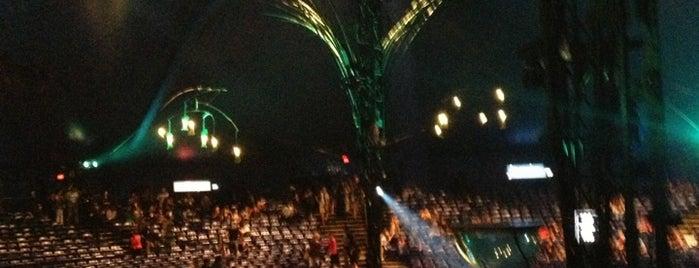 Cirque Du Soleil - Amaluna is one of The Next Big Thing.