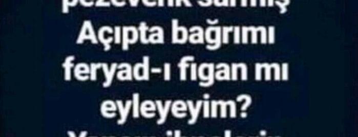 TEKNO-TEST Oto Ekspertiz Merkezi is one of Çiçekさんのお気に入りスポット.