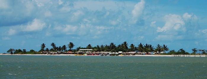 Ilha de Itamaracá is one of Recife.
