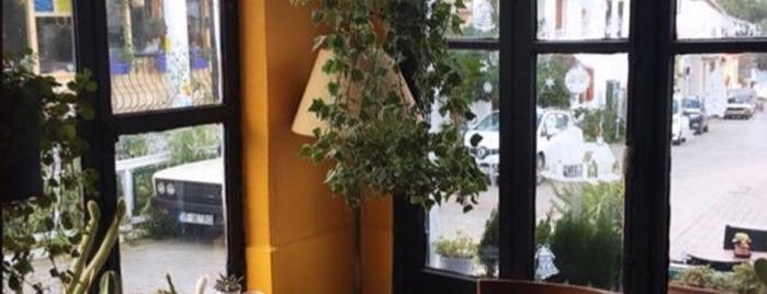 Plantsta Botanik & Cafe is one of izmir gidilecekler.
