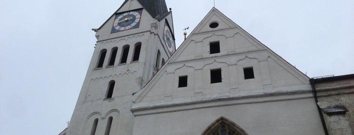 Dom St. Salvator, Unsere Liebe Frau und St. Willibald is one of Kathedralkirchen.