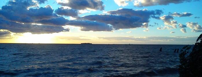 Набережная Финского залива is one of สถานที่ที่ Oksana ถูกใจ.