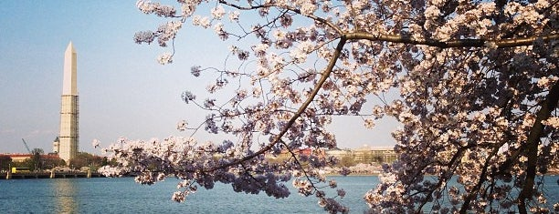 Tidal Basin is one of DC.