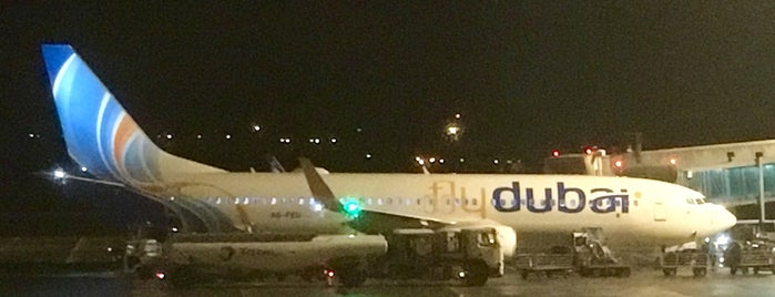 flydubai FZ782 • PRG – DXB is one of PRG ✅.