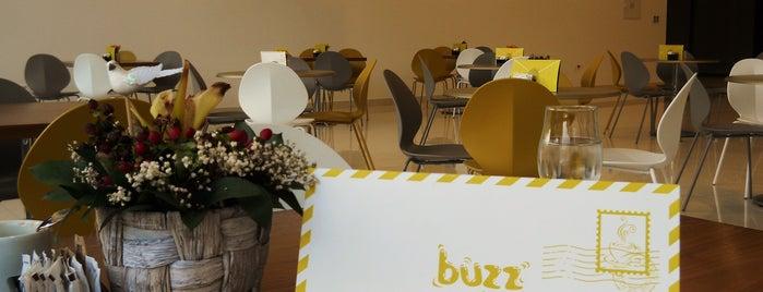Buzz is one of Montenegro Wifi spots.