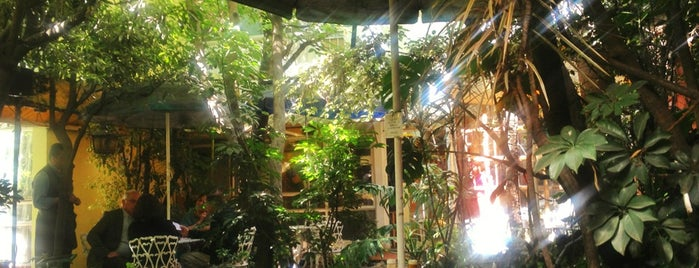 Jardin Interior is one of Comida saludable CDMX.