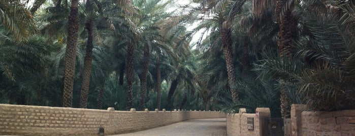 Al Ain Oasis is one of The #AmazingRace 23 travel map.