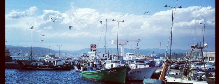 Port de Palamós is one of Begur-Tips.