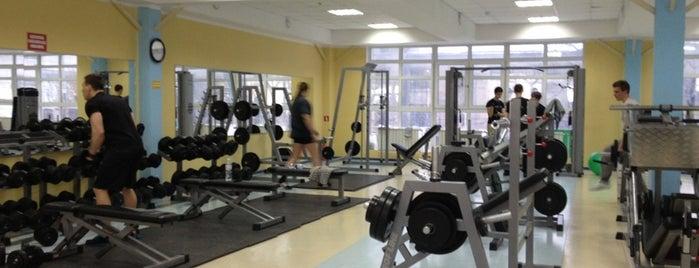 Фитнес-клуб «Альбион» is one of Мой Киев.
