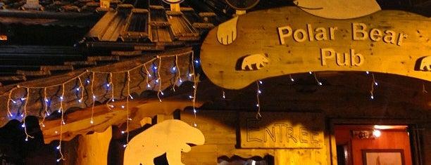 Polar Bear Pub is one of Locais salvos de Ulaş.