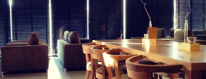 کافه های خوب شیراز /Shiraz Best Cafe'