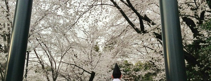松陰神社 is one of せたがや百景 100 famous views of Setagaya.
