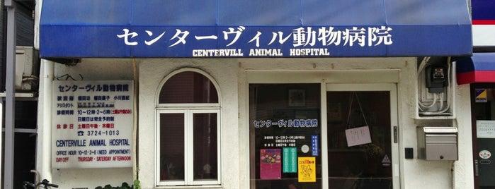 センターヴィル動物病院 is one of Posti che sono piaciuti a osam.