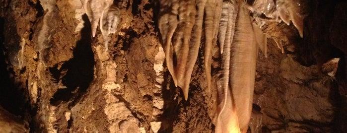 Bozkovské dolomitové jeskyně is one of Tourist tips by Škoda.