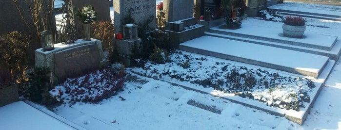 Friedhof Hietzing is one of Vienna.