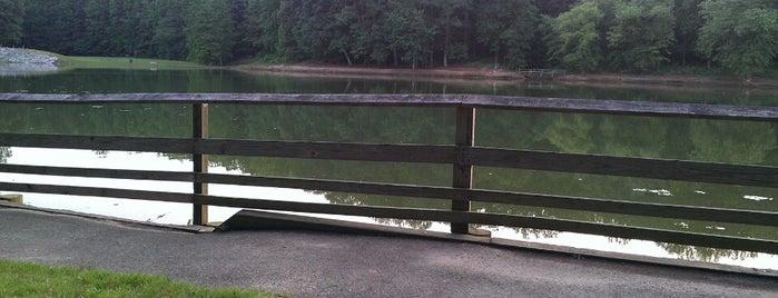 Cosca Regional Park is one of John: сохраненные места.