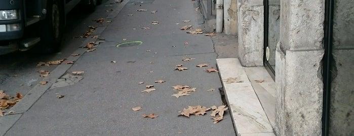 Boulangerie Saint Vincent is one of Bill Buford's Lyon.