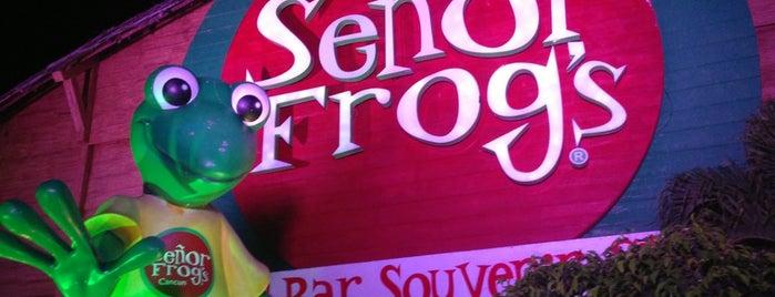 Señor Frog's is one of Trip.