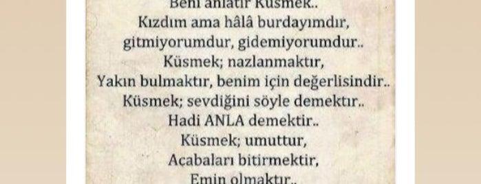 Bayramefendi Osmanlı Kahvecisi is one of Sapanca.