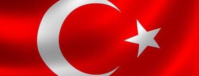 Digiturk Genel Müdürlük is one of bjk.