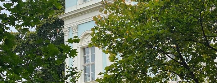 Belvedere is one of Guide to Berlin's best spots.