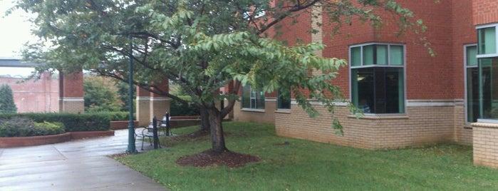 Johnson City Public Library is one of Lugares favoritos de JD.