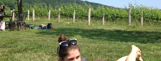 Breaux Vineyards is one of Spots for Regional American Wine.