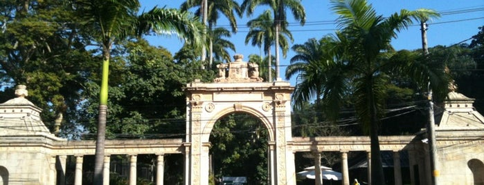 Jardim Zoológico do Rio de Janeiro is one of Must-Gos in a weekend while visiting Rio.