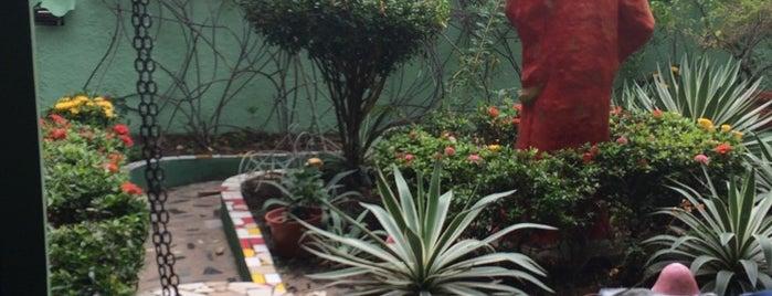 Gafanhoto's is one of Locais curtidos por Priscilla.