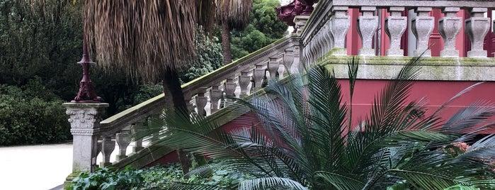 Jardim Botânico do Porto is one of สถานที่ที่ Vyacheslav ถูกใจ.