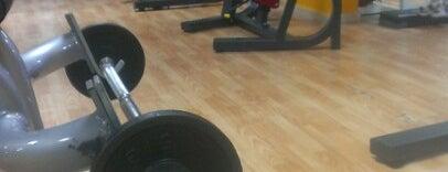Gold Gym is one of Orte, die Yasin gefallen.