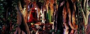El Bosc de les Fades is one of Barcelona´s Coolest Bars.