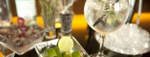 Elephanta is one of Barcelona's Top 5 Gin and Tonic Bars.