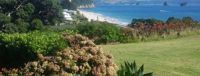 Hahei Beach is one of Locais curtidos por Olive.