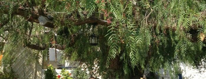 Piperia is one of Crete.