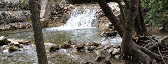 City Creek Park is one of สถานที่ที่บันทึกไว้ของ Jane.