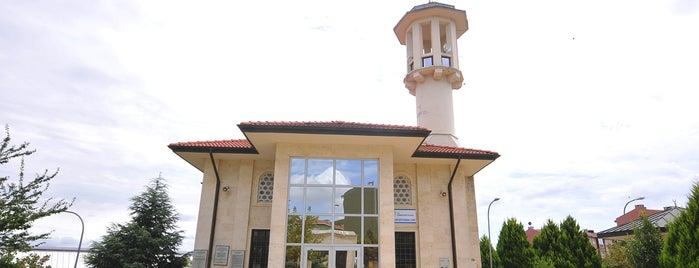 Şeyh Edebali Cami is one of Yönetimimdekiler.